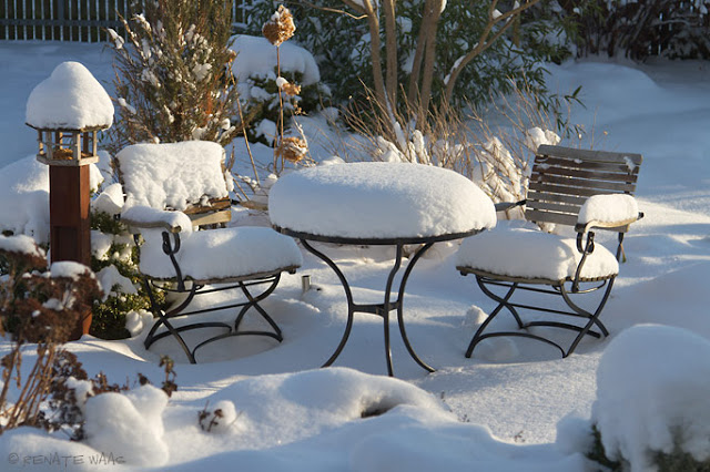 Pflegetipps Zum Winter So Erhalten Sie Die Schonheit Ihrer