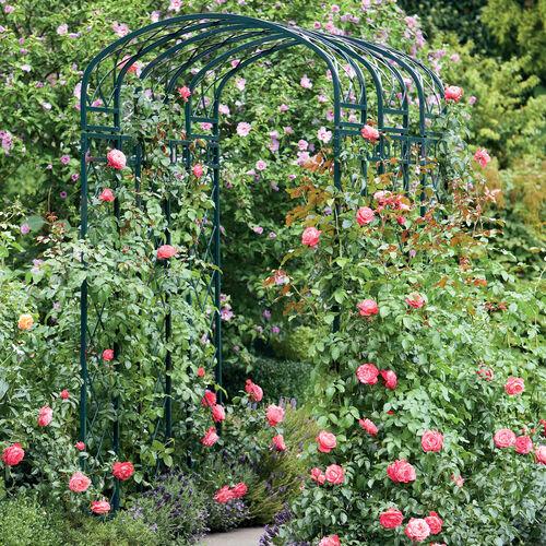 rosenbogen klein garpa. Black Bedroom Furniture Sets. Home Design Ideas